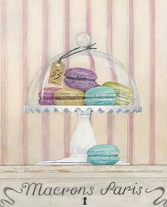 French Macaroons 2 by Arnie Fisk