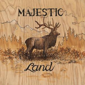 Majestic Land by Arnie Fisk