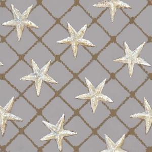 Net Full of Stars by Arnie Fisk