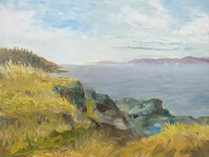 Pacific Coast View by Arnie Fisk