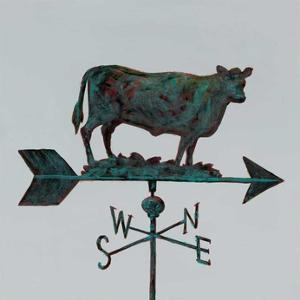 Rural Relic Cow by Arnie Fisk
