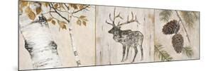 Rustic Forest Panel by Arnie Fisk