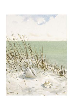 Seaside Bluff