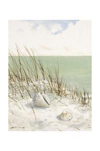 Seaside Bluff by Arnie Fisk
