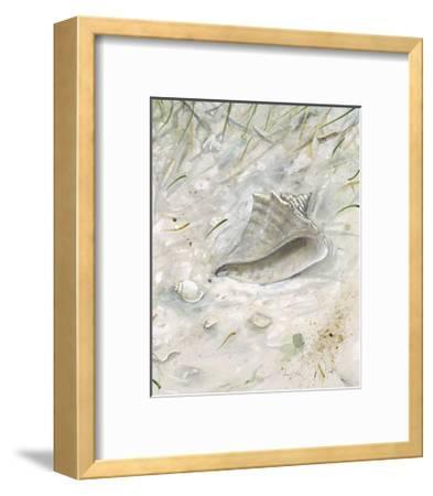 Seaside Conch