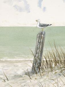 Seaside Perch by Arnie Fisk