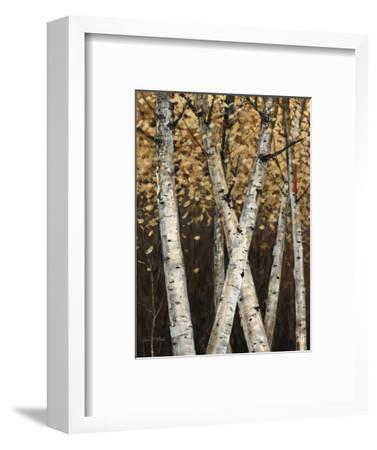 Shimmering Birches 1