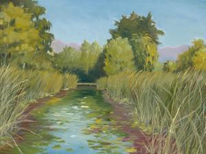 Wetland Sanctuary by Arnie Fisk