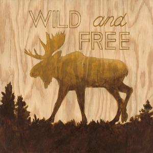 Wild and Free by Arnie Fisk