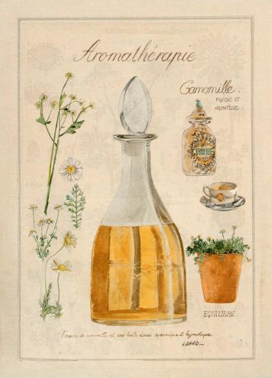 Aromatherapie, Camomille-Laurence David-Art Print
