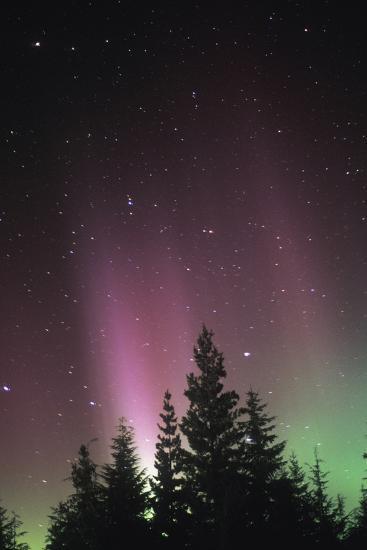 Arora Borealis, Northern Lights--Photographic Print