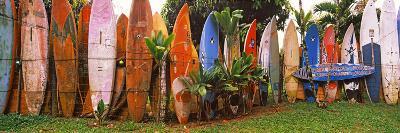 Arranged Surfboards, Maui, Hawaii, USA--Photographic Print