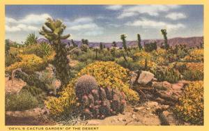 Array of Cacti