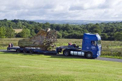 Arrival of the 'Ghost Forest' in the National Botanic Garden of Wales--Photographic Print
