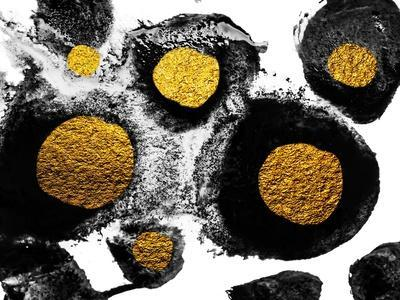 https://imgc.artprintimages.com/img/print/art-and-gold-natural-luxury-black-paint-stroke-texture-on-white-paper-abstract-hand-painted-gold_u-l-q1ds3up0.jpg?p=0