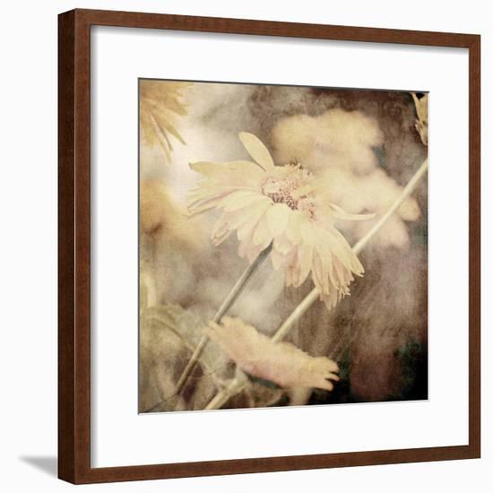 Art Floral Vintage Sepia Background with Light Yellow Chamomiles-Irina QQQ-Framed Premium Giclee Print