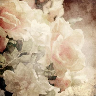 https://imgc.artprintimages.com/img/print/art-floral-vintage-sepia-background-with-white-roses_u-l-pofa9t0.jpg?p=0