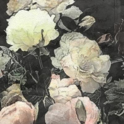 https://imgc.artprintimages.com/img/print/art-floral-vintage-watercolor-background-with-white-and-light-pink-roses-and-peonies_u-l-pofkic0.jpg?p=0