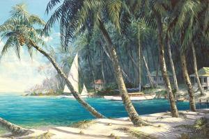Bali Cove by Art Fronckowiak