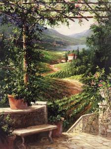 Chianti Vineyard by Art Fronckowiak