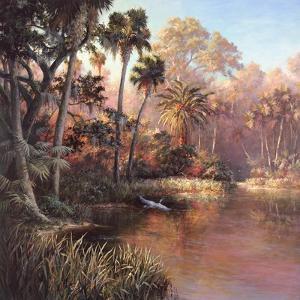 Myakka Sunset by Art Fronckowiak
