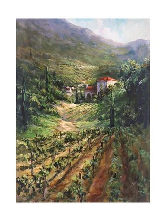 Vineyards Of Tuscany D Italy Art Print Home Decor Wall Art Poster