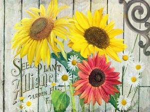 Farm Seed Sunflowers by Art Licensing Studio
