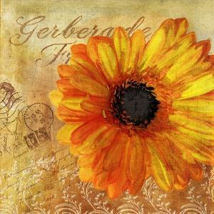 Golden Gerbera I by Art Licensing Studio