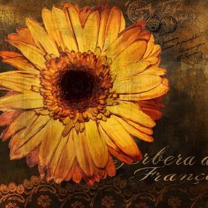 Golden Gerbera III by Art Licensing Studio