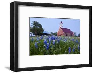 Art Methodist Church and Bluebonnets Near Mason, Texas, USA-Larry Ditto-Framed Photographic Print