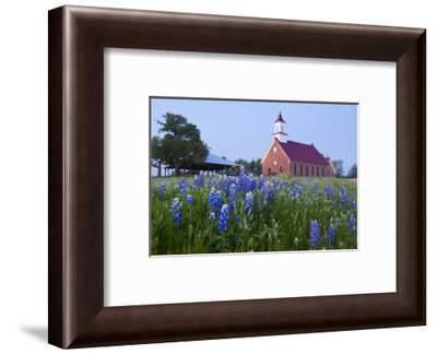 Art Methodist Church and Bluebonnets Near Mason, Texas, USA-Larry Ditto-Framed Photographic Print