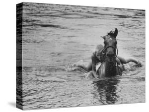 Sydney Hoyle Floundering on Back of Horse in Water at Full Cry Farm by Art Rickerby