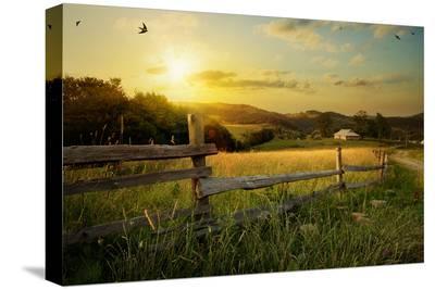 Art Rural Landscape. Field and Grass-Konstanttin-Stretched Canvas Print