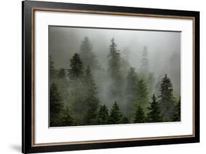 Alaska by Art Wolfe