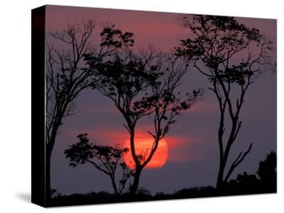 Amazonia Sunset