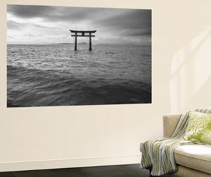 Biwa Japan by Art Wolfe