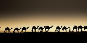 Danakil Depression Ethiopia by Art Wolfe