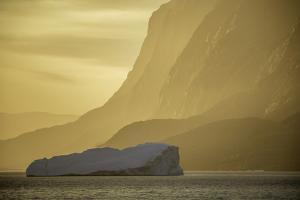 Greenland by Art Wolfe