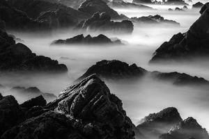 Point Lobos, California by Art Wolfe