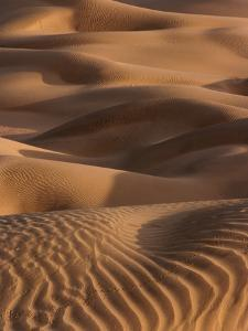Sand Prints by Art Wolfe