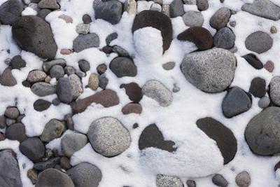 Snow and Rocks, Mt Rainier National Park, Washington, USA