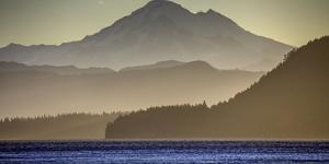Washington Coast by Art Wolfe