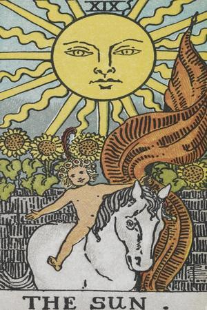 Tarot Card With a Young Child Riding a White Horse With Large Sunflowers and Sun Behind