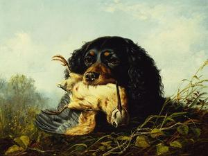 A Cocker Spaniel with a Woodcock by Arthur Fitzwilliam Tait