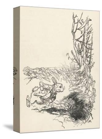 Alice: Down Rabbit-Hole