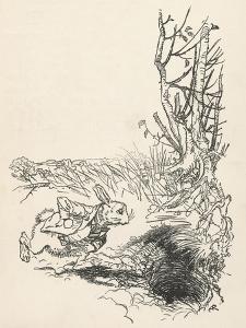 Alice: Down Rabbit-Hole by Arthur Rackham