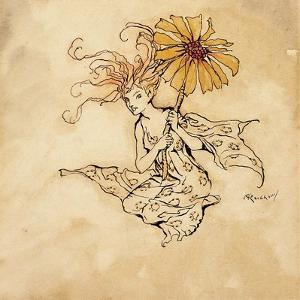 Daisy Fairy, Illustration from 'Peter Pan in Kensington Gardens', by J.M. Barrie, Published 1912 by Arthur Rackham