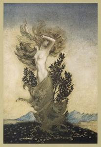 Daphne into Tree by Arthur Rackham
