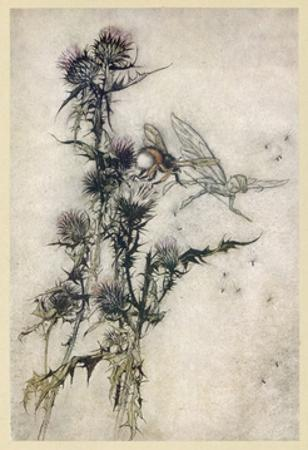 Fairy and Bee