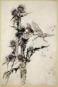Kill Me a Red-Hipped Humble-Bee on the Top of a Thistle by Arthur Rackham